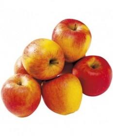 pommes gala